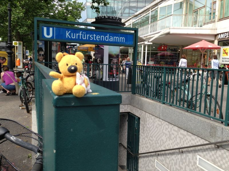 Teddy_Berlin